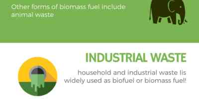 Biomass Boilers | Biomass Fuel: Types, Heating ...