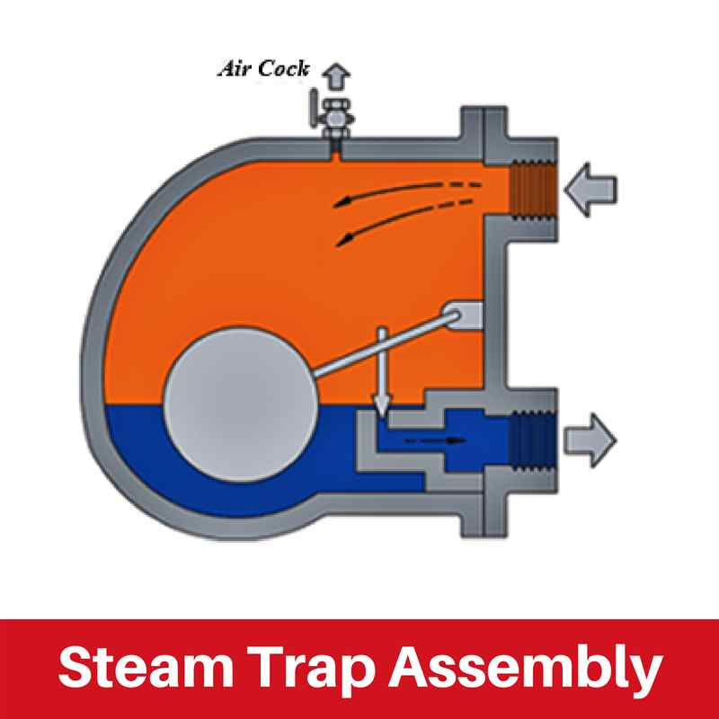 Steam Trap Assembly